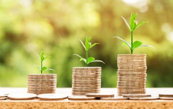 Economía, Ética, Valores y Comportamientos
